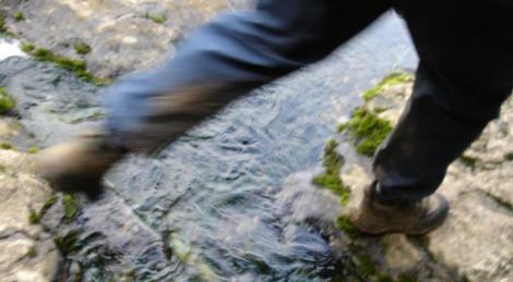 boots Alvados